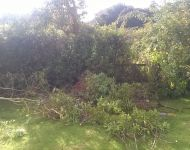 Before garden clearance Parkham, Devon